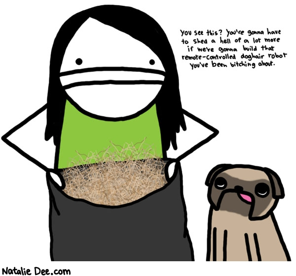 Natalie Dee comic: i really wish these fucking dogs would shed more * Text:   You see this? You're gonna have to shed a hell of a lot more if we're gonna build that remote-controlled doghair robot you've been bitching about.