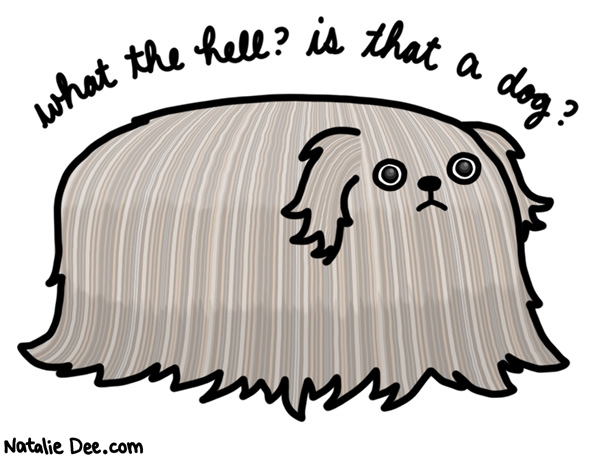 Natalie Dee comic: that is a useless ass dog * Text: What the hell? Is that a dog?