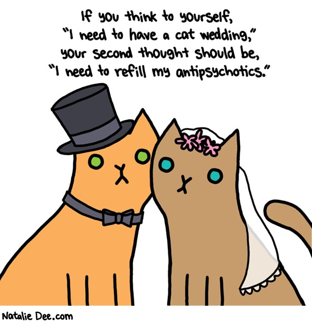 Natalie Dee comic: show me a cat who wants to get married * Text: if you think to yourself i need to have a cat wedding your second thought should be i need to refill my antipsychotics