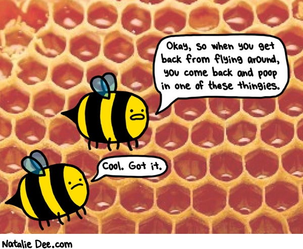 Natalie Dee comic: bee orientation * Text: