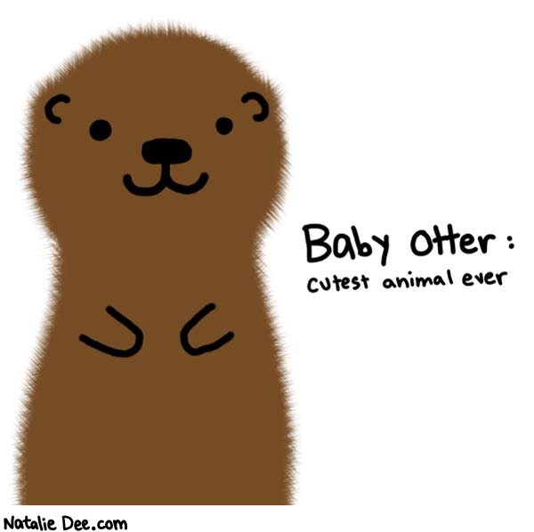 Natalie Dee comic: cute cute cute * Text:   Baby Otter: cutest animal ever