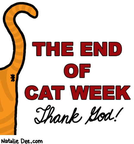 Natalie Dee comic: CW cat week is over * Text: the end of cat week thank god