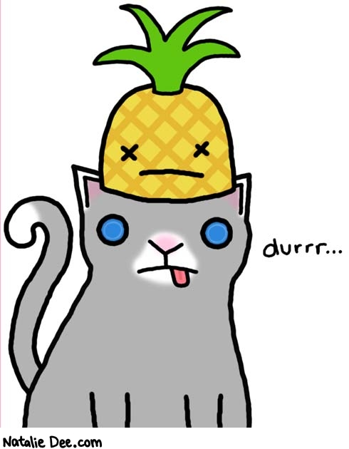 Natalie Dee comic: cats r dumb * Text:   cats r dumb   durrr...
