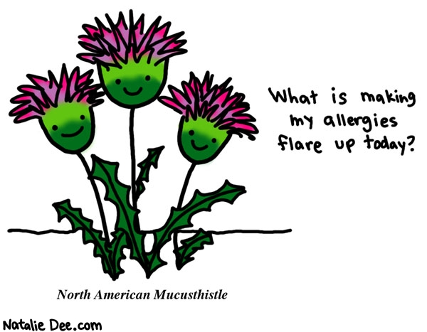 Natalie Dee comic: why cant i breathe i dont even go outside at all * Text: what is making my allergies flare up today? north american mucusthistle