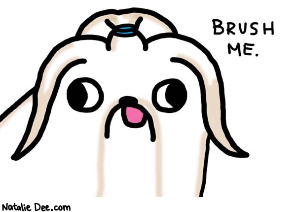 Natalie Dee comic: i would like a bow also please * Text:   BRUSH ME.