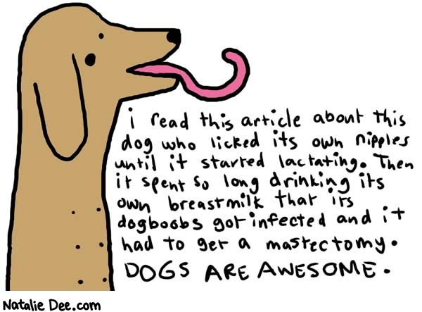 Natalie Dee comic: dogs are awesome * Text:   i read this article about this dog who licked its own nipples until it started lactating. Then it spent so long drinking its own breastmilk that its dogboobs got infected and it had to get a mastectomy. DOGS ARE AWESOME.